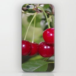Cherries, fresh on the tree iPhone Skin