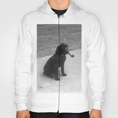 Pipe puffing dog. Hoody