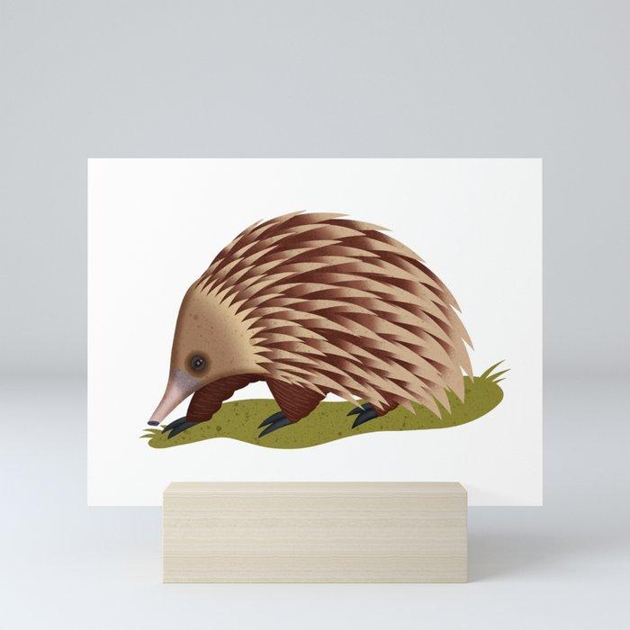 Echidna Mini Art Print