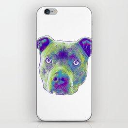 Blue Pitbull dog iPhone Skin