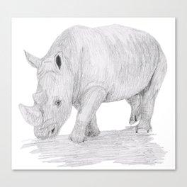 Rhino Pencil Sketch Canvas Print