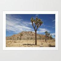 Desert Landcape 3 Art Print