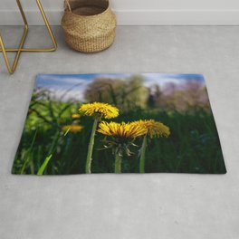 Concept flora : Dandelions in a field Rug