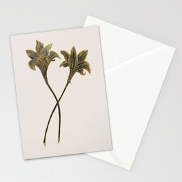 Indian Lily Daffodil Stationery Cards