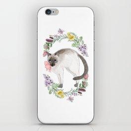 Pixie the Chocolate Siamese Cat iPhone Skin