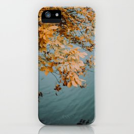 Autumn Copper + Teal iPhone Case