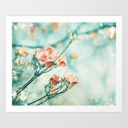 Teal Peach Coral Flower Photography, Aqua Turquoise Orange Dogwood Floral Nature Art Art Print