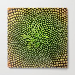 Yellow Sunflower Portrait by Jeanpaul Ferro Metal Print