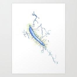 Otisco Lake Art Print