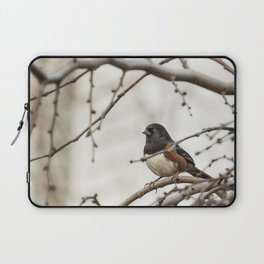 Spotted Towhee Laptop Sleeve