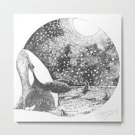Orcinus orca Metal Print