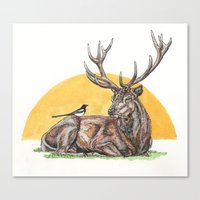 stag Canvas Prints featuring Stag by Meredith Mackworth-Praed