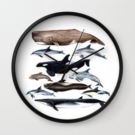 Atlantic whales, dolphins and orca Wall Clock