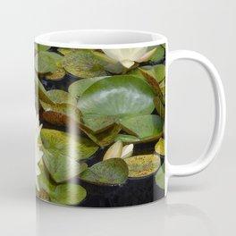 Pale Yellow Water Lilies Coffee Mug