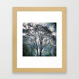 Tree wonderland Framed Art Print