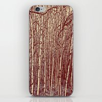 birch iPhone & iPod Skins featuring Birch by Indigo Rayz