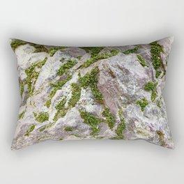 Vibrations, Glacier National Park Rectangular Pillow