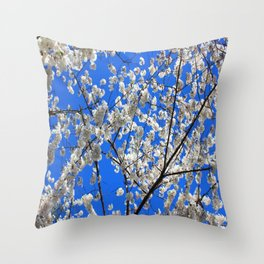 Cherry Blossoms in DC Throw Pillow