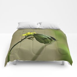 Green Winged Fairy Butterfly Comforters