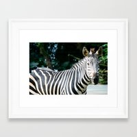striped Framed Art Prints featuring Striped by maisie ong