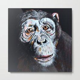 Chimpanzee: One Survivor Metal Print