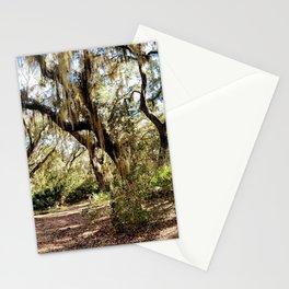 Cumberland Island State Park Stationery Cards