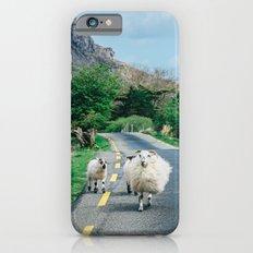 Sheep Slim Case iPhone 6