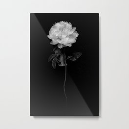 Flower in Bloom Metal Print