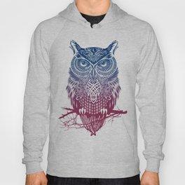 Evening Warrior Owl Hoody