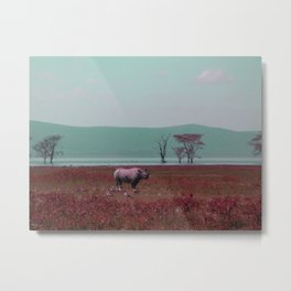 Black Rhino in Pink Metal Print