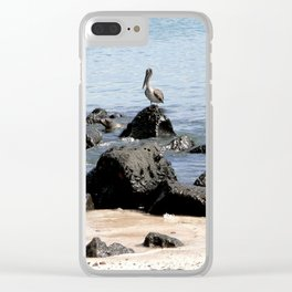 water, rock and pelican Clear iPhone Case