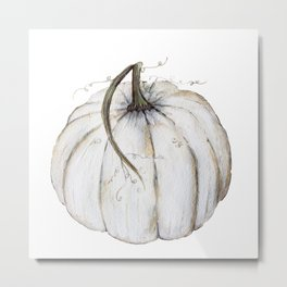 White Pumpkin Metal Print
