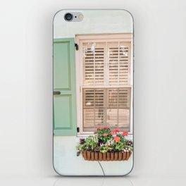 Mint Window in Charleston iPhone Skin