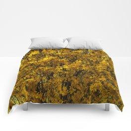 Northern Golden Forsythia Comforters