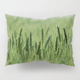 Crop Pillow Sham