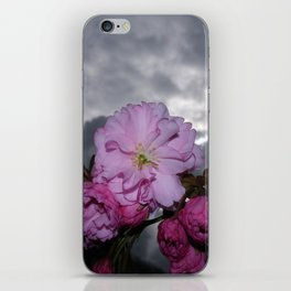 CHERRY BLOSSOM WITH SPRING STORMY SKY iPhone Skin