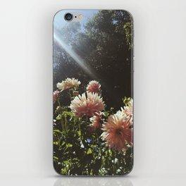 Sunbeam Cluster iPhone Skin