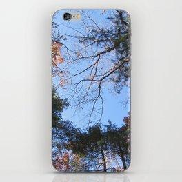 Half Fall iPhone Skin