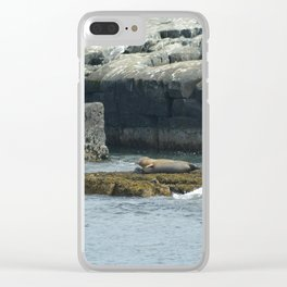 Seals relaxing on Coast of Maine Clear iPhone Case