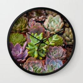 Miniature Succulent Garden Wall Clock