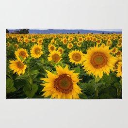 Field of Sunflowers, California Rug