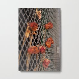 Brooklyn Fences Metal Print