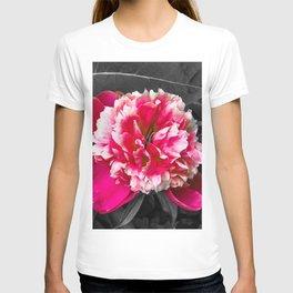 Paeony pink black and white T-shirt