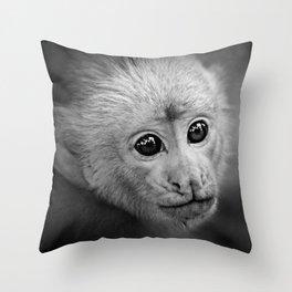 Cebus Monkey  Throw Pillow
