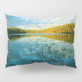 Earth, Water and Air Pillow Sham