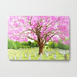 Arlington National Cemetery Metal Print