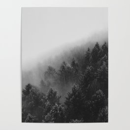Misty Forest II Poster