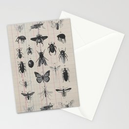 Vintage Insect Study on antique 1800's Ledger paper print Stationery Cards
