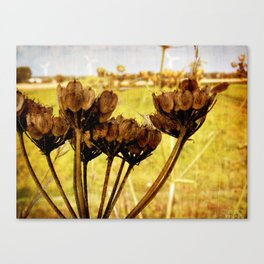 End of summer is near Canvas Print