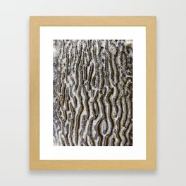 Textures by the sea Framed Art Print